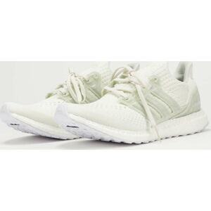 adidas Performance UltraBoost 6.0 DNA X Parley EUR 46 2/3